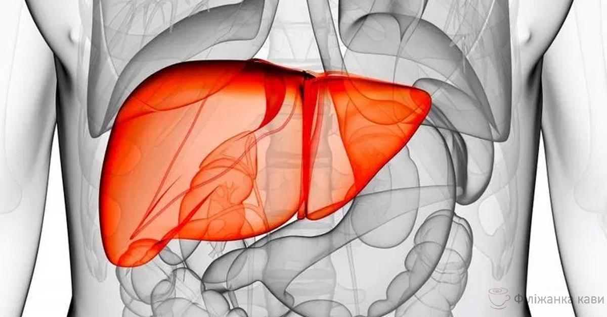 Домашній напій для очищення печінки і артерій запобіжить хвороби!