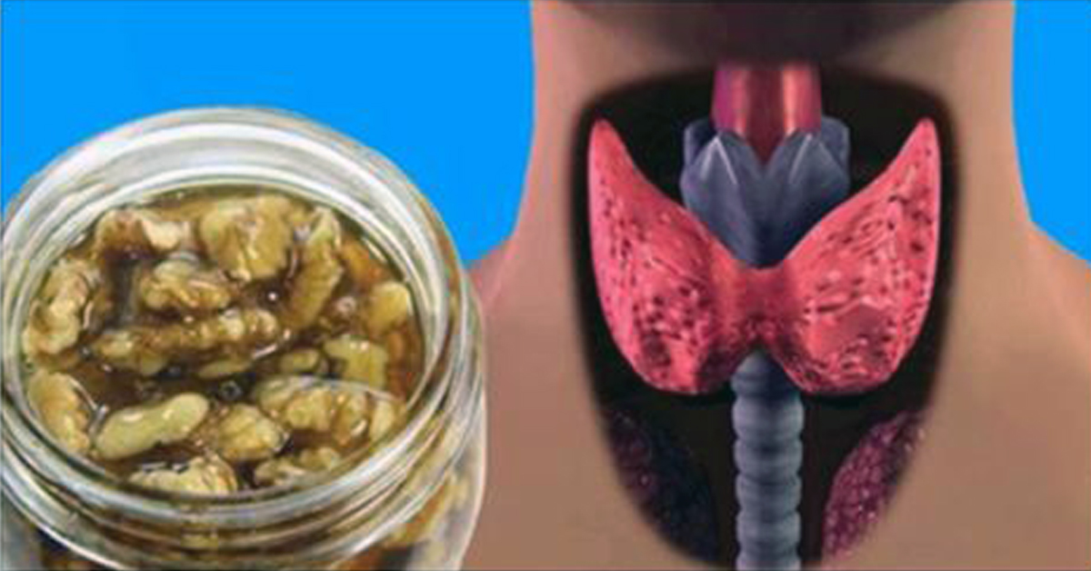 Простий рецепт для відновлення роботи щитовидки і гормонального балансу!