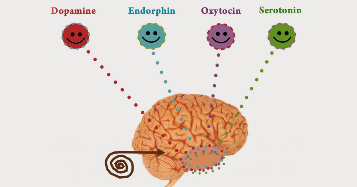 Серотонін: 8 важливих функцій (сон, голод, пам'ять ...) і його натуральні джерела!