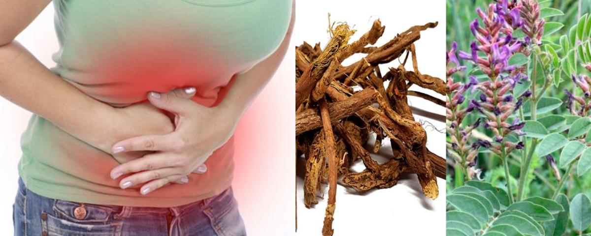 Потужний корінь від печії, виразки шлунка, високого цукру в крові, дисбалансу гормонів і не тільки!